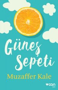 gunes_sepeti-2